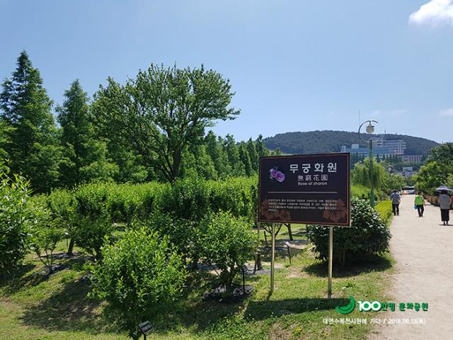 20190613 대연전시수목원005.jpg